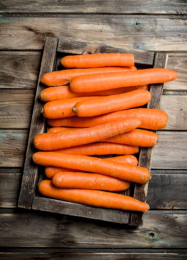 Cenouras frescas em uma bandeja de madeira foto de stock