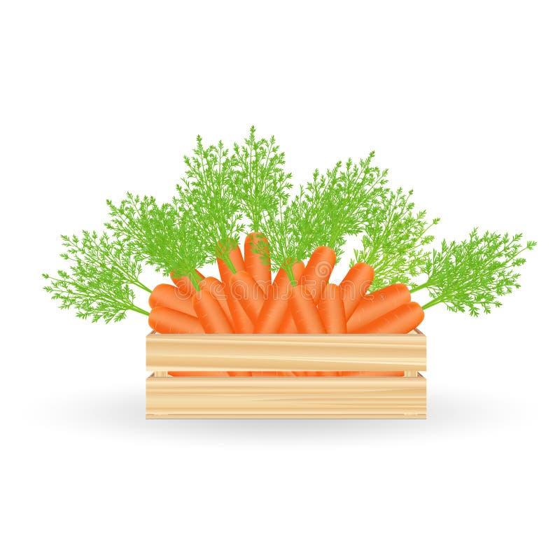 Cenouras frescas na caixa foto de stock royalty free