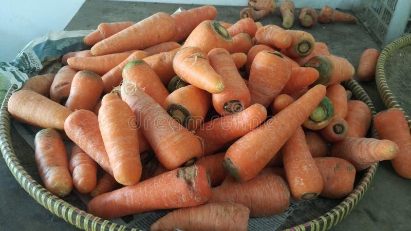 Cenouras frescas no mercado tradicional foto de stock