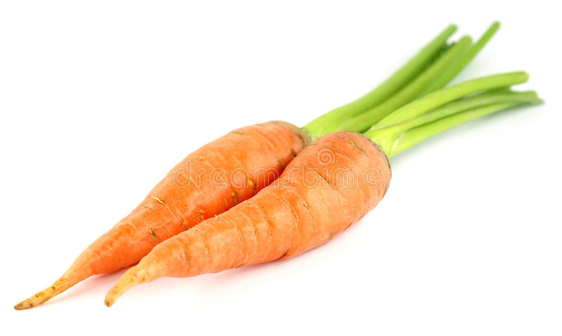 Cenouras frescas sobre o fundo branco imagens de stock