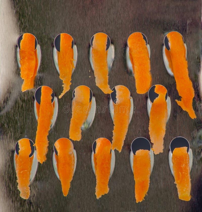 Cenouras raspadas O processo de moer cenouras em um ralador fotografia de stock