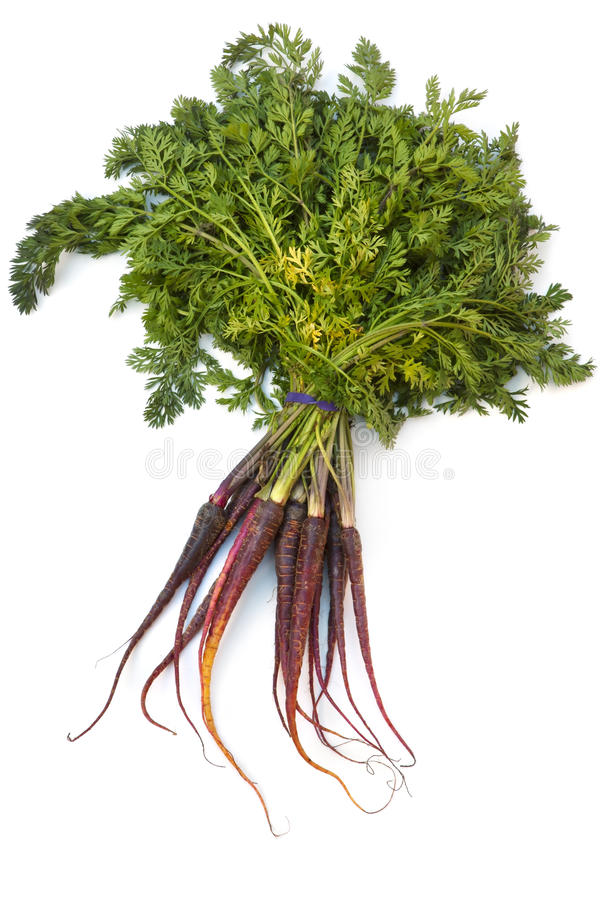 Cenouras roxas fotografia de stock royalty free