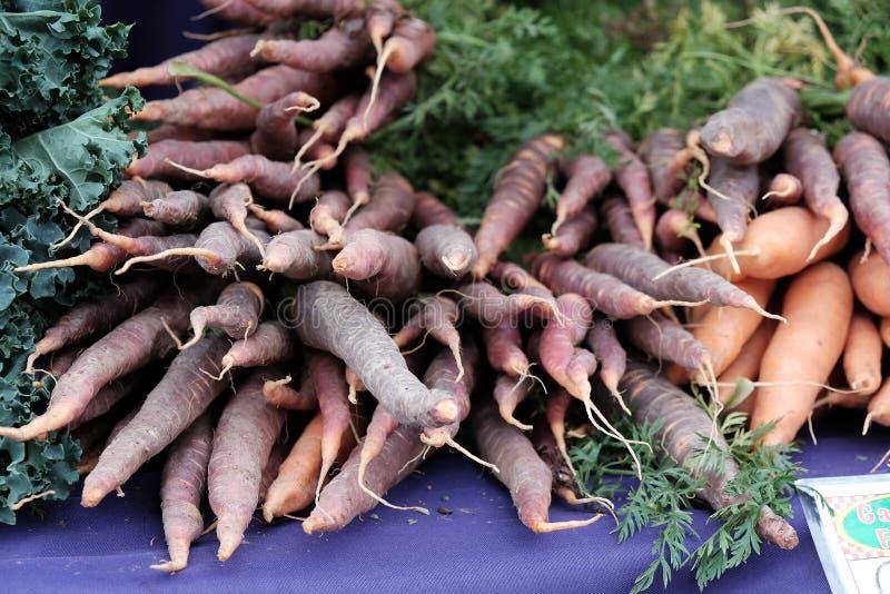 Cenouras roxas no mercado dos fazendeiros de Corvallis fotografia de stock royalty free
