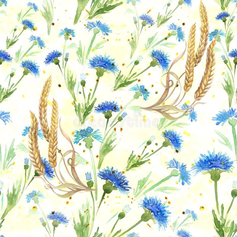 Centáureas e orelhas do trigo Teste padrão sem emenda watercolor wallpaper Use materiais impressos, sinais, cartazes, cartão, pac ilustração stock