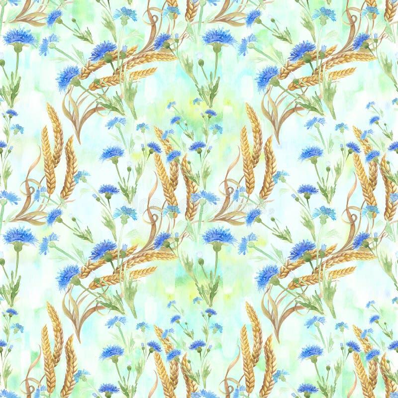 Centáureas e orelhas do trigo Teste padrão sem emenda watercolor wallpaper Use materiais impressos, sinais, cartazes, cartão, pac ilustração do vetor