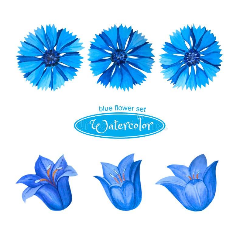 Centáureas e sinos, cabeças de flor Isolado no fundo branco ilustração do vetor