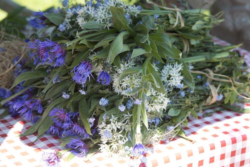 Centaurea azul y ajo salvaje fotografía de archivo