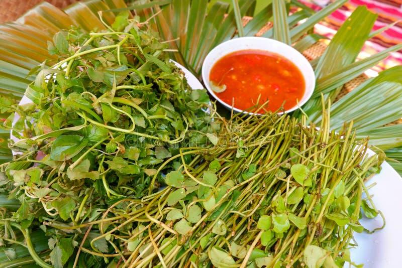 Centella asiatica et légumes photo libre de droits