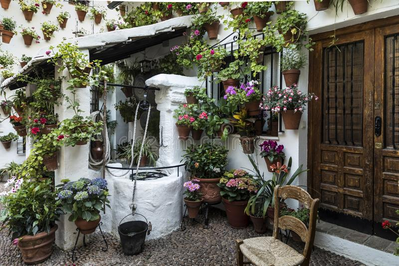 Entrance to a house in the center of the city of Córdoba completely covered with flower pots. In the center of the Andalusian city of Córdoba, the royalty free stock photos