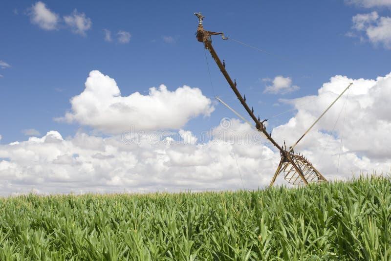 A Center Modern Pivot Irrigation System Stock Photography