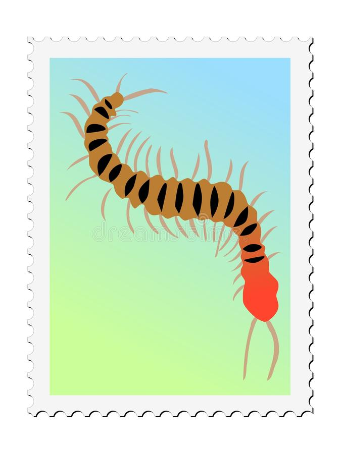 Centipede stock illustration