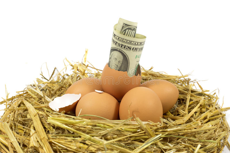 Cento dollari americani di Bill Coming Out di un uovo rotto nel nido fotografia stock libera da diritti