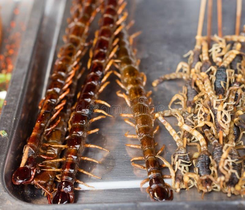 Centopiedi caramellato e scorpioni fritti immagini stock libere da diritti
