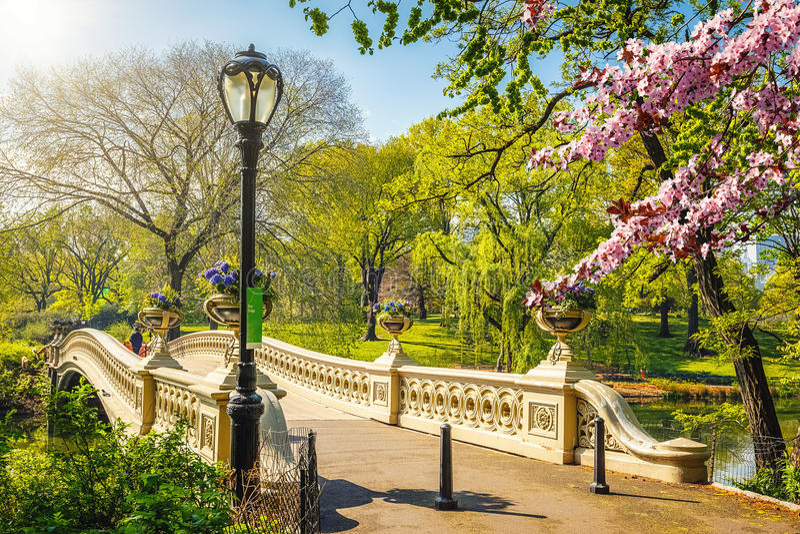 Centraal park bij de lente, New York stock fotografie