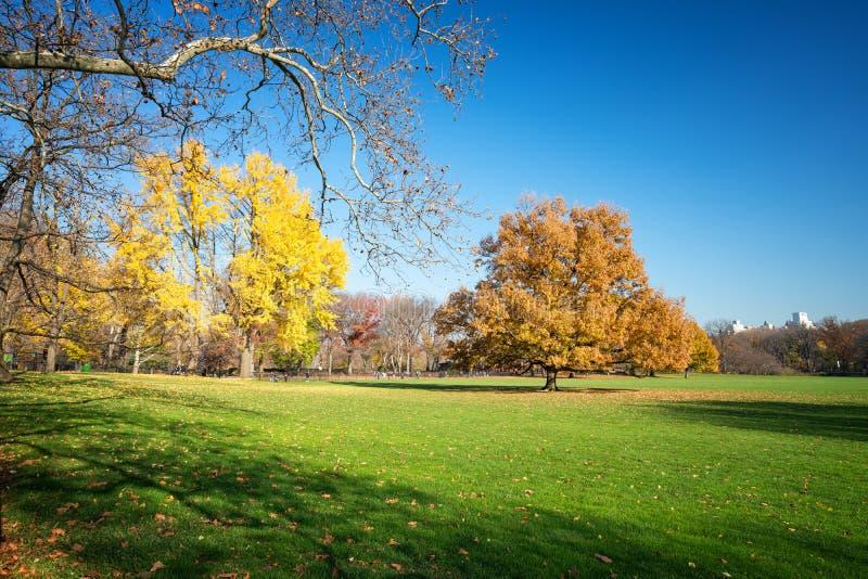 Centraal park bij zonnige de herfstdag stock afbeelding