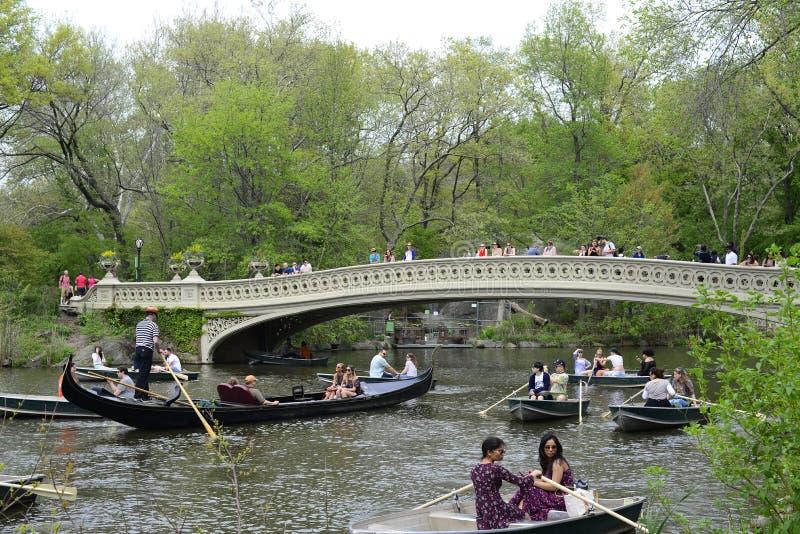 Centraal park in de lente stock afbeeldingen