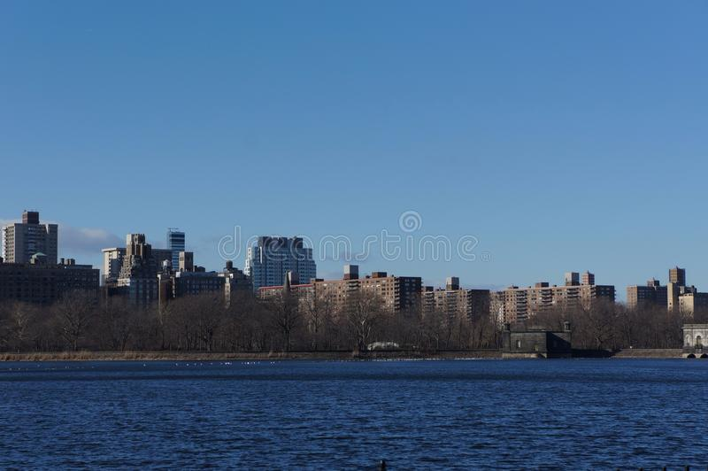 Centraal park nyc stock foto's