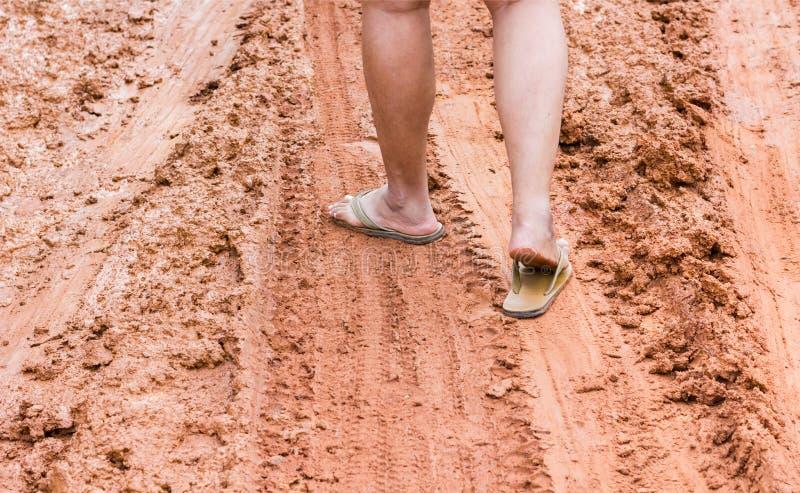 Centrado en la pierna en el pie con las sandalias que caminan en el camino fangoso imagenes de archivo