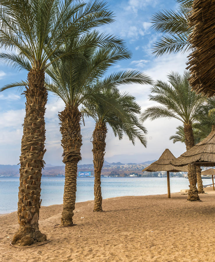 Central beach of Eilat. Eilat is a famous resort and recreation city in Israel located on the Red Sea royalty free stock photography