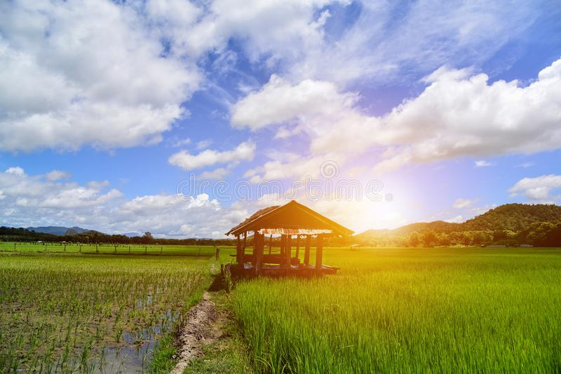 Little hut in the field with white clouds. stock images