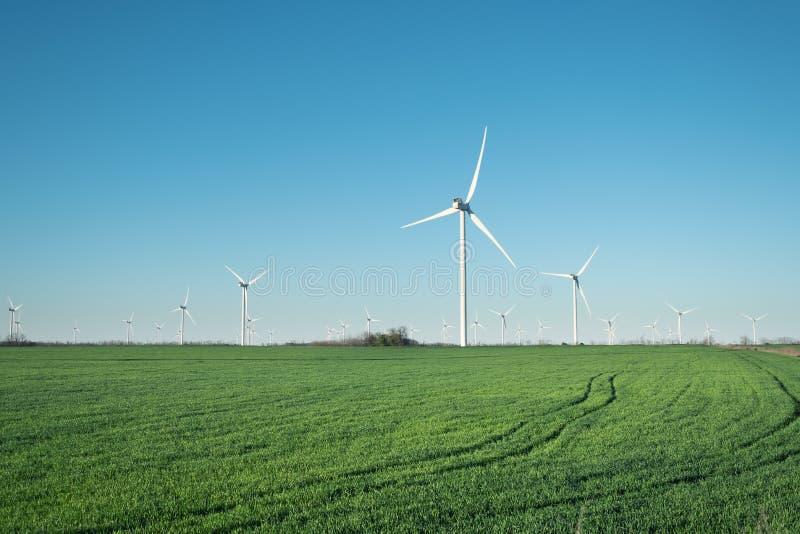 Central elétrica de energias eólicas no campo Tecnologia e inovation Composição de energia verde Turbinas de vento, campo amarelo foto de stock royalty free
