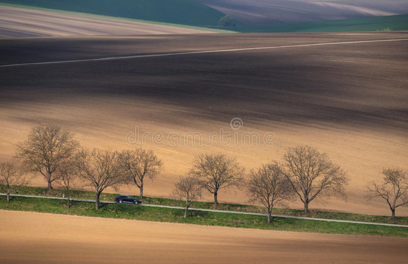 Central Europe. A black car rides among a multicolored hilly field. Landscape with a shiny black car, multi-colored plowed field a royalty free stock photo