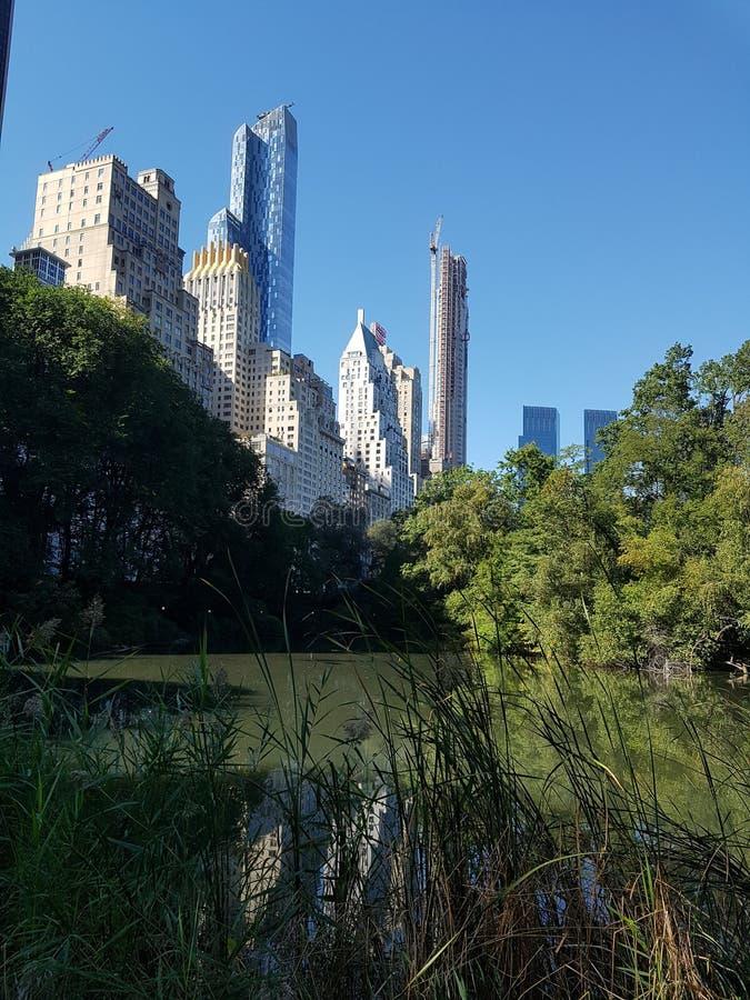 Central Park往NYC的湖视图 库存照片