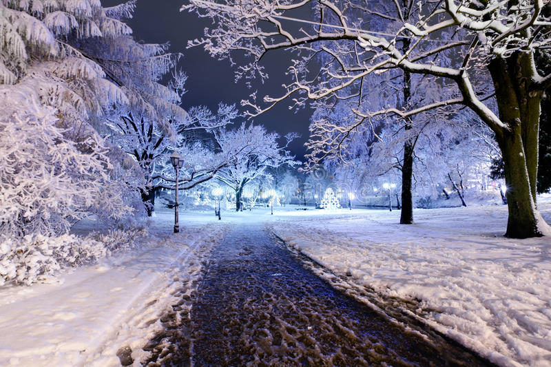 Central Park à Riga, Lettonie la nuit hiver photographie stock