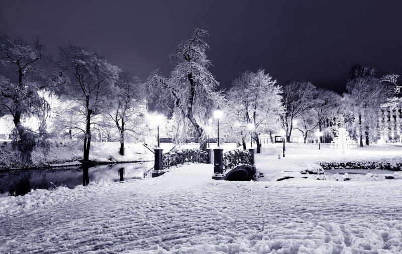 Central Park à Riga, Lettonie la nuit hiver photographie stock libre de droits