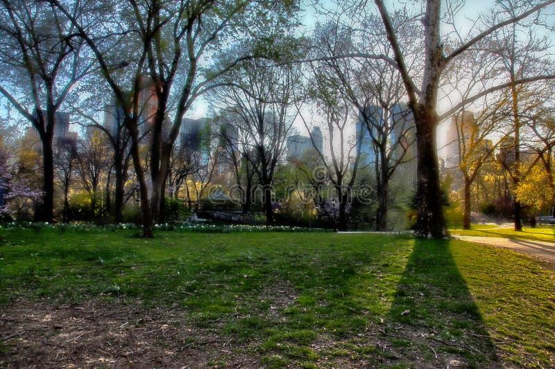 Central Park, Νέα Υόρκη, ΗΠΑ στοκ εικόνα με δικαίωμα ελεύθερης χρήσης