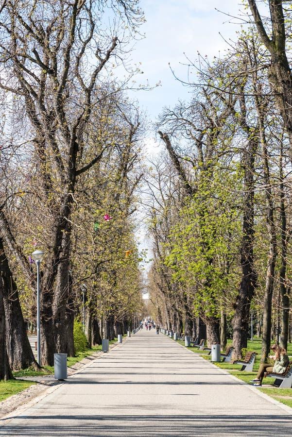 Central Park в Cluj Napoca стоковая фотография