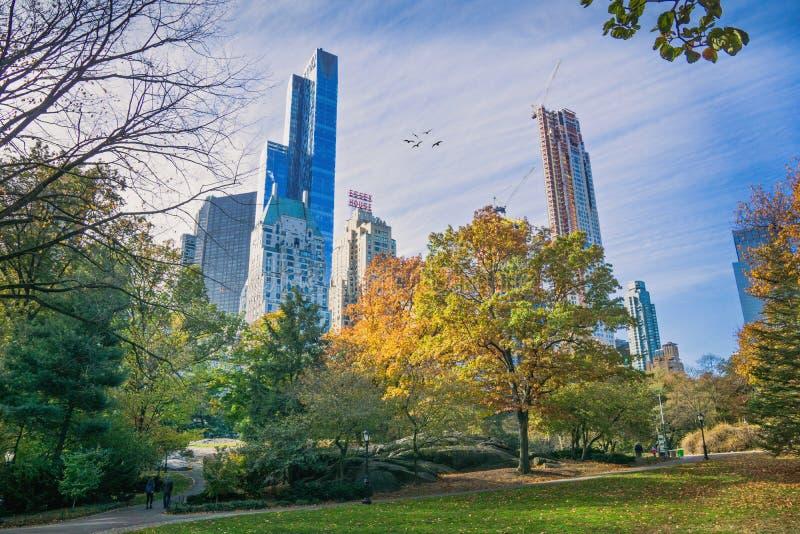 Central Park в NYC в последнем падении стоковое изображение rf