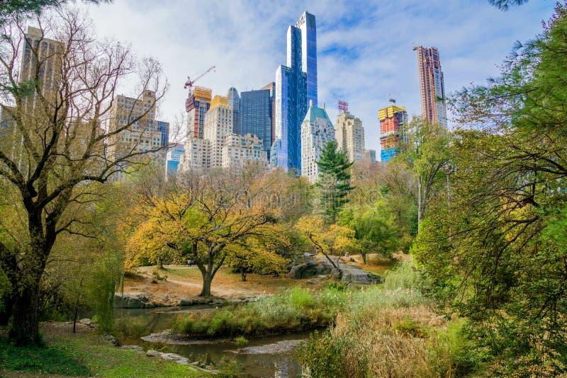 Central Park в NYC в последнем падении стоковые фотографии rf