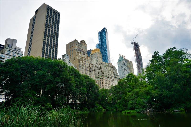 Central Park на летний день, Нью-Йорк стоковая фотография rf