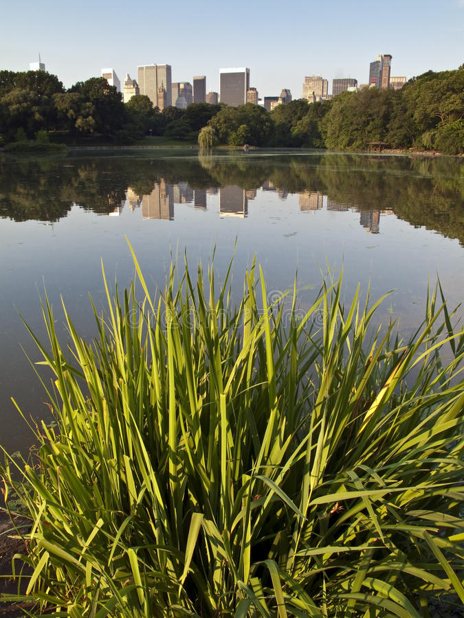 Central Park. Early in the monring at the lake very still with Central Park south in the far distant royalty free stock photography