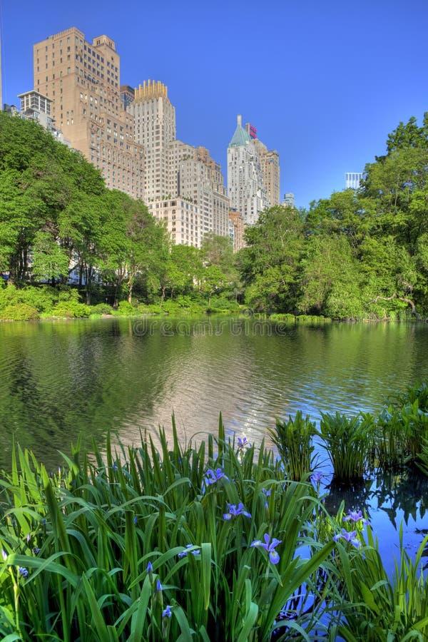 Central Park arkivbild