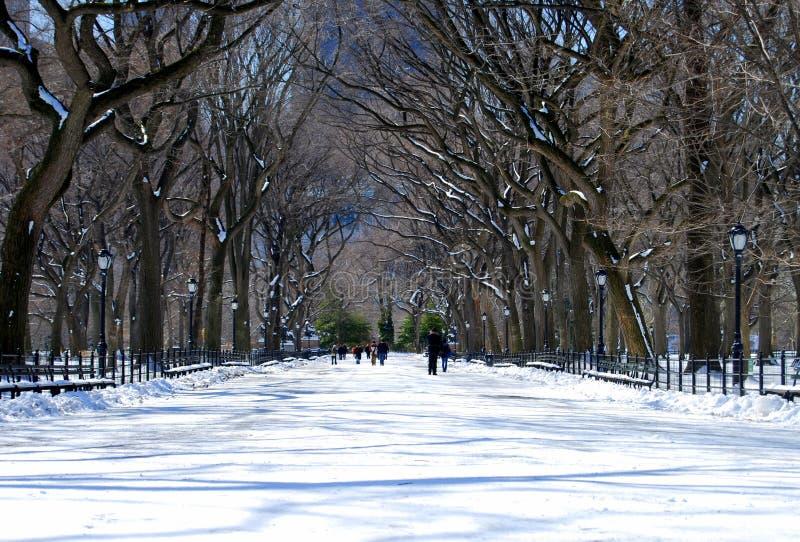 Central Park royaltyfria foton