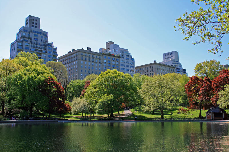Central Park. A shot of Central Park in Manhattan - New York royalty free stock photos
