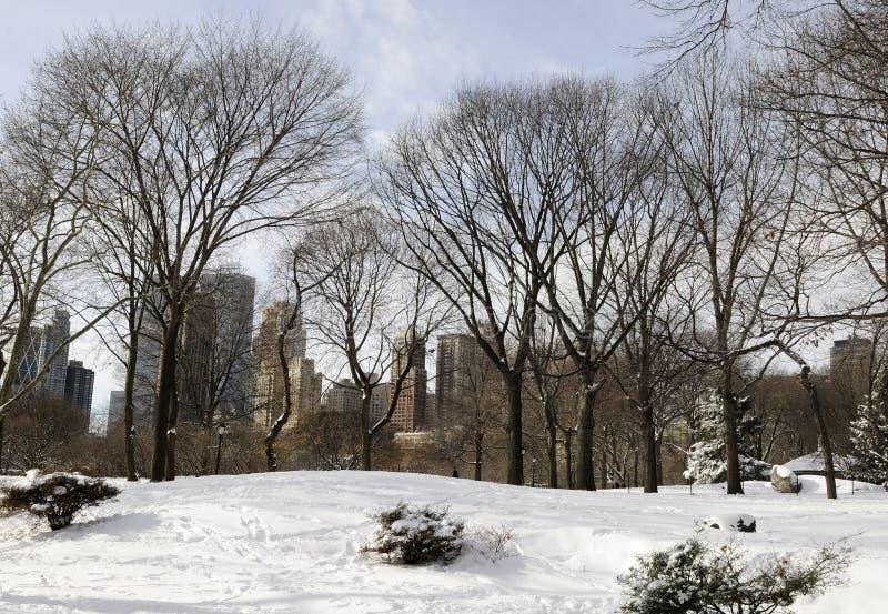 Central Park fotografia de stock royalty free