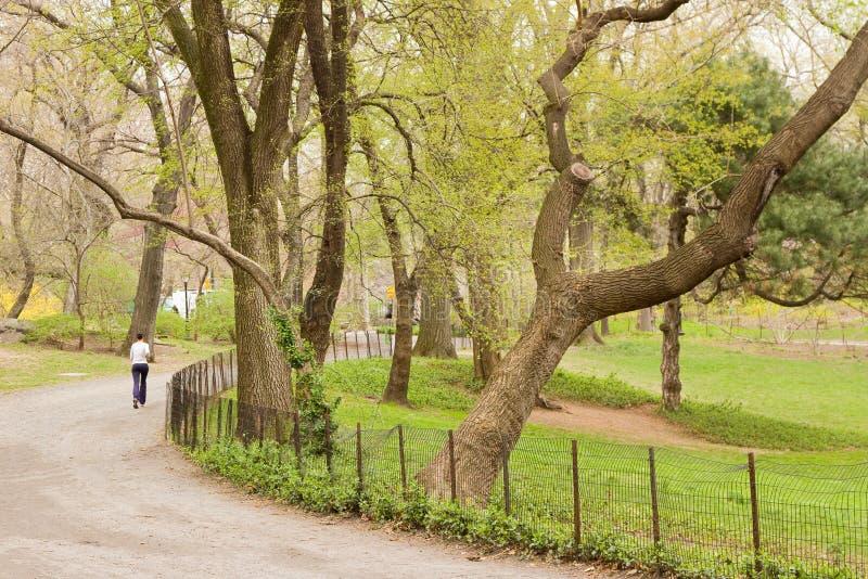 Central Park photographie stock