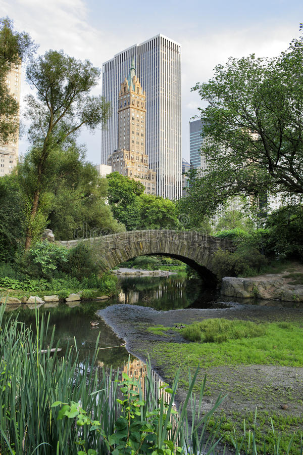 Central Park royaltyfri foto