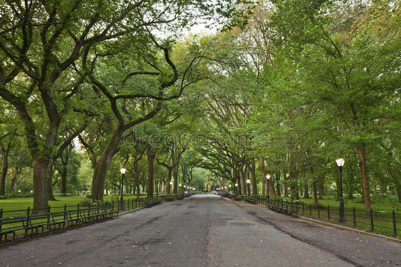 Central Park. Image of The Mall area in Central Park, New York City, USA royalty free stock image