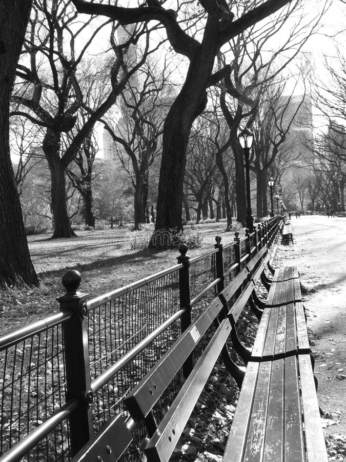 Central Park imagem de stock royalty free