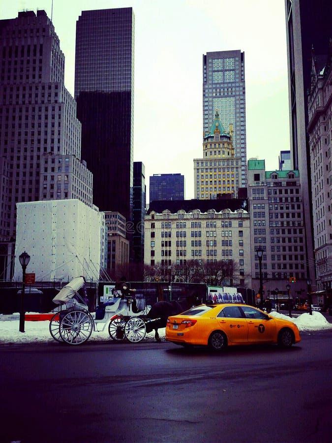 Central Park стоковые изображения rf