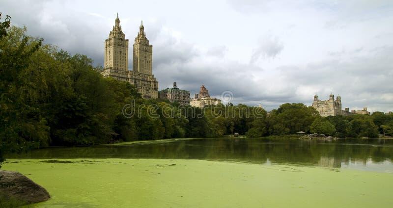 Download Central Park immagine stock. Immagine di limite, nuvoloso - 7324557