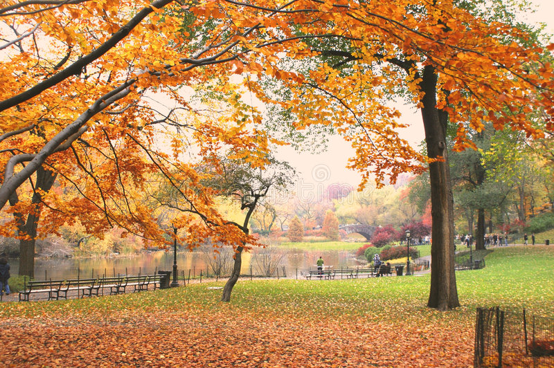 Central Park stock photography
