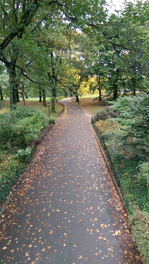Central Park imagen de archivo libre de regalías