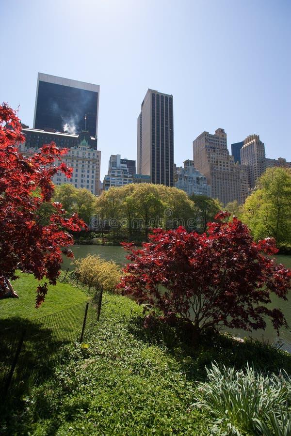 Central Park royalty-vrije stock foto