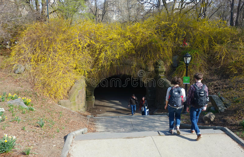 Central Park Arch royalty free stock photo