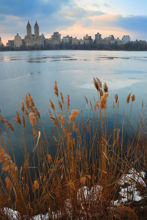 Free Central Park At Dusk, New York City Royalty Free Stock Images - 12930839